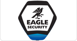 Welcome to Eagle Security Logo